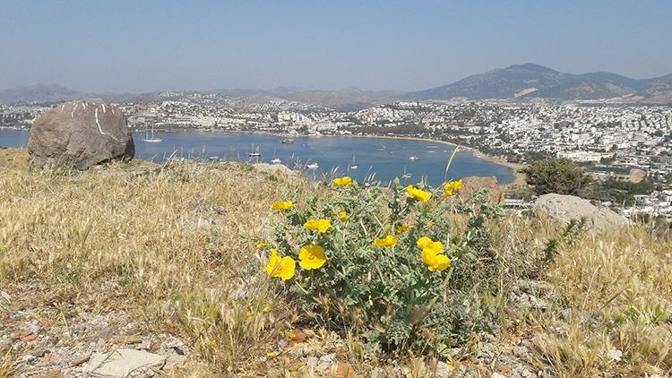 péninsule de Bodrum en Turquie