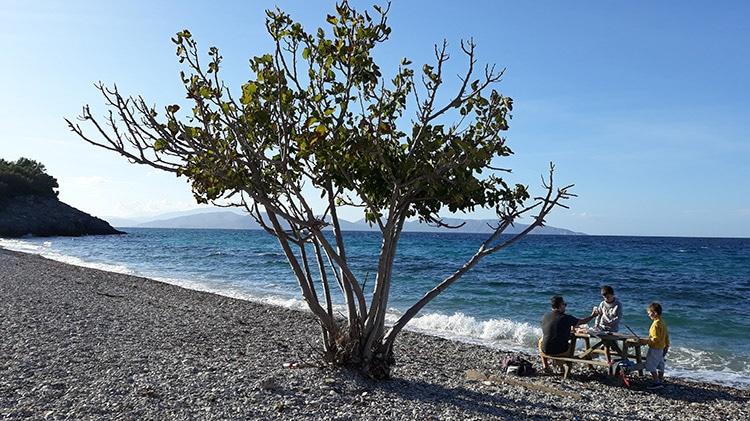 parc national de dilek en turquie et sa plage