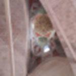 voutes de la mosquee aux trois balcons à edirne en turquie