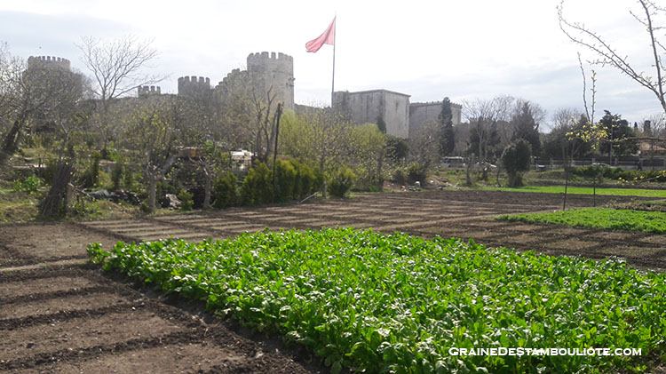 Forteresse de Yedikule, 7 tours, sur la Muraille de Constantinople à Istanbul, dont la Porte d'Or