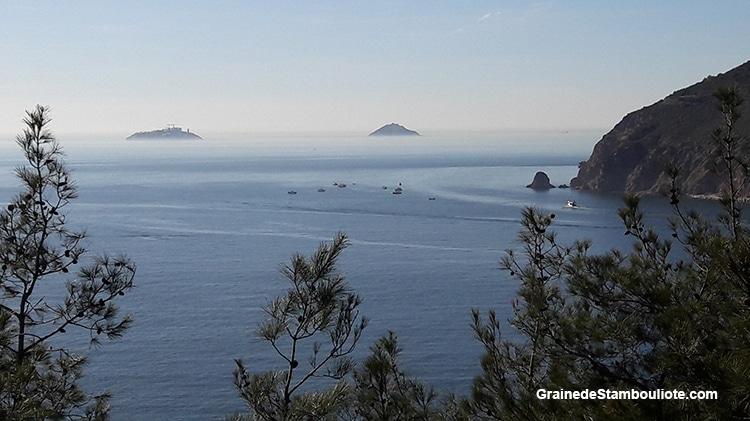 vue des îles aux Princes à Istanbul, île de Heybeliada, sur la mer de Marmara