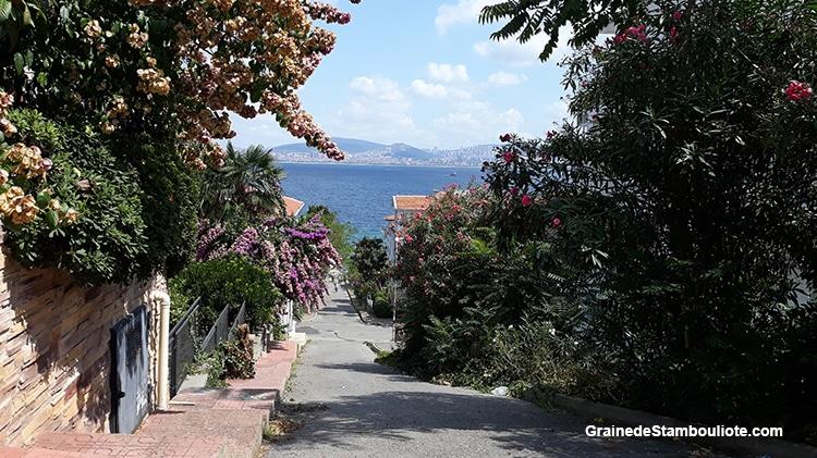 vue des îles aux Princes à Istanbul, île de Kinaliada, sur la mer de Marmara