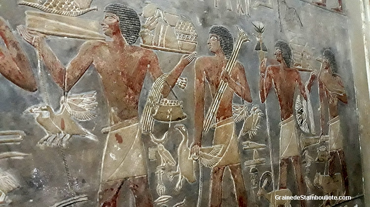 peintures du mastaba de Ptah-Hotep, plateau de Saqqara, Le Caire, Egypte