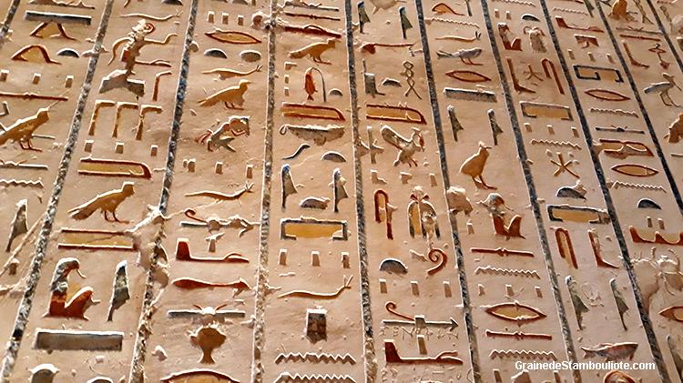 vallee des rois, louxor, thebes, Egypte, hiéroglyphes, livre des morts