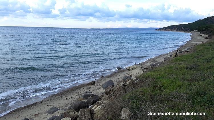 ANZAC day, plages d'ANZAC Cove, Gallipoli, Bataille des Dardanelles, Canakkale, première Guerre Mondiale