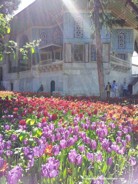 Palais Topkapi, Istanbul, Ottoman, Kiosque Erevan, Tulipes